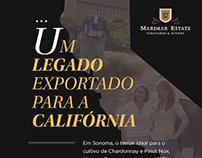 Newsletter - Marimar