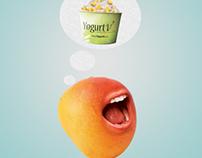 Yogurt Vi II