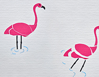 Flamingo Metamorfose.