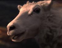 VOLKSWAGEN- Sheep