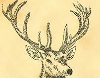 deer [de*r]