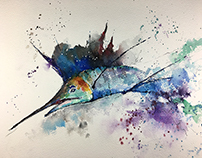 Watercolor - Sailfish