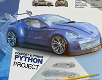 Python car project