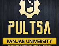 Logo Design for Pultsa