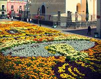 Tradicional Día De Muertos Puebla (Day of the Dead)