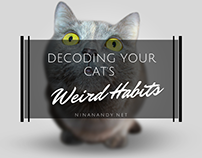 Decoding Your Cat's Weird Habits
