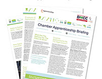 Chamber Apprenticeship Briefing