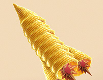 BUGLES CHIP