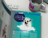 Level Magazine Video Multimedia