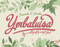 Yerbaluisa, a calligraphic typeface