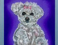 Pet portrait commission