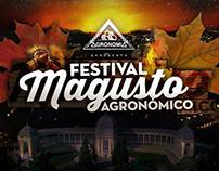 Festival Magusto Agronómico 2015