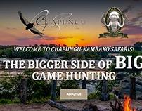 Chapungu Kambako Safaris