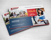 International Brochure | Chandigarh University