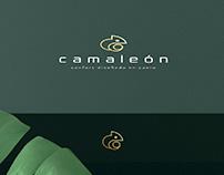 Branding - Camaleón
