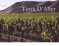 Wine Promotional Brochure