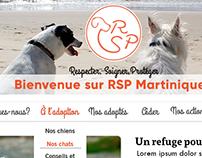 Webdesign, référencement et refonte du site