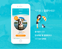 Doglay - service for abandoned pet