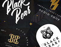 Black Bear Branding + Web Design