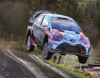 Luis Perez Companc - Rally Habilidades de conducción