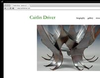 Portfolio Website Proposal   Spring 2010