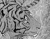 Pen and Ink Animal Drawings