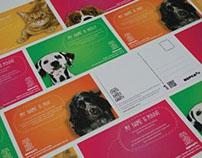 RSPCA: Adopt-a-pet Campaign