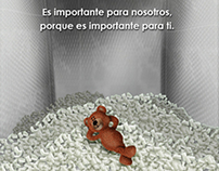 Intrafletex (Campaña de introducción)