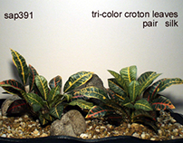 tri color croton lvs, silk, 1012, ron beck designs