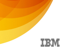 IBM - Capitalizing on Complexity