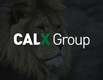 CALX Group Identity and Website