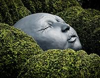 Gardens of Etretat - Les jardins d'Étretat