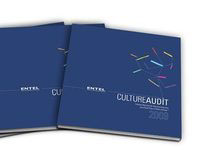 Entel - Culture Audit