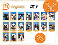 Dogtopia Back to School Photo Collages 2017-2019