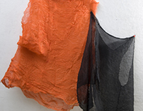 Dance Performing Costumes (2009)