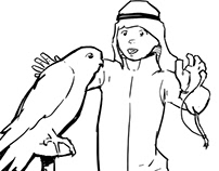 The Falconry Club: Storyboards