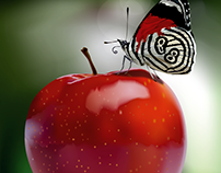 Apple and Butterfly