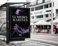 Lumières marines - Exposition MMM