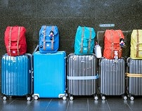 FashionNuevo luggage
