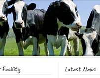 Website Design, HTML/CSS  - Spratts Veterinary