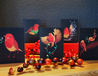 'Robins' Christmas Cards