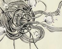 mimicry&dandelions