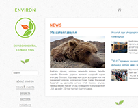 Environ LLC Website Second Redesign