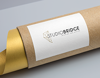 Studio Bridge