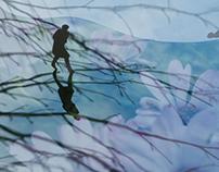 WINTER REFLECTS