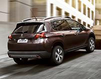 Peugeot 2008 (part I)