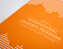2010 - 2011 International graduate programs