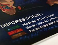 Cartographie Deforestation