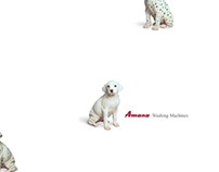 Amana Washing Machines - Spotless