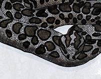 Endangered - Eastern Massasauga Rattlesnake